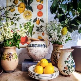 IMG_0644_lemons